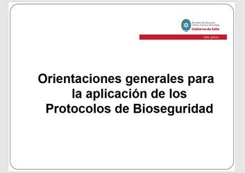 Orientaciones generales para la aplicación de los Protocolos de Bioseguridad