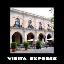 Visita express (virtual)