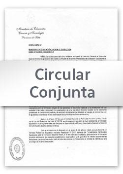 Circular Conjunta Nº 01 (2017)