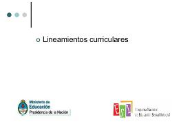 ESI - Presentacion lineamientos curriculares